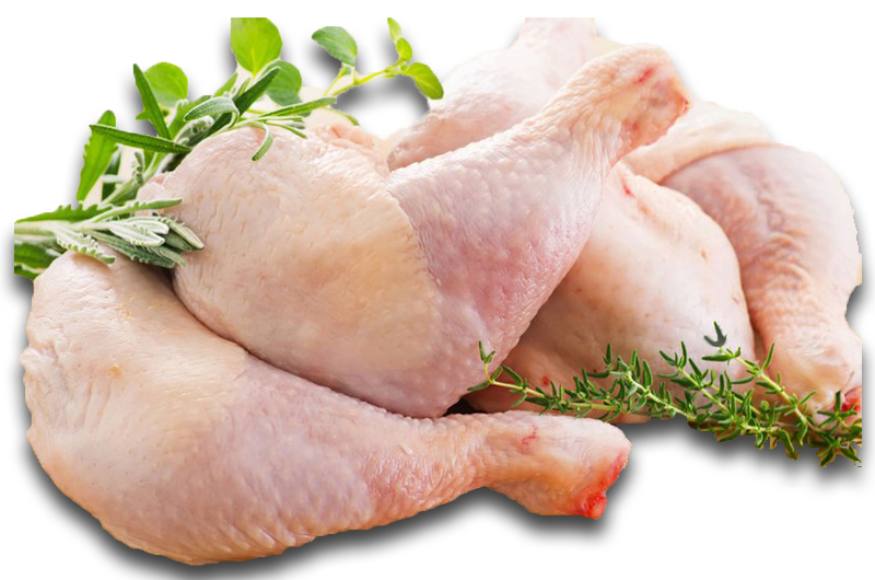 Chicken Legs, Glatt kosher