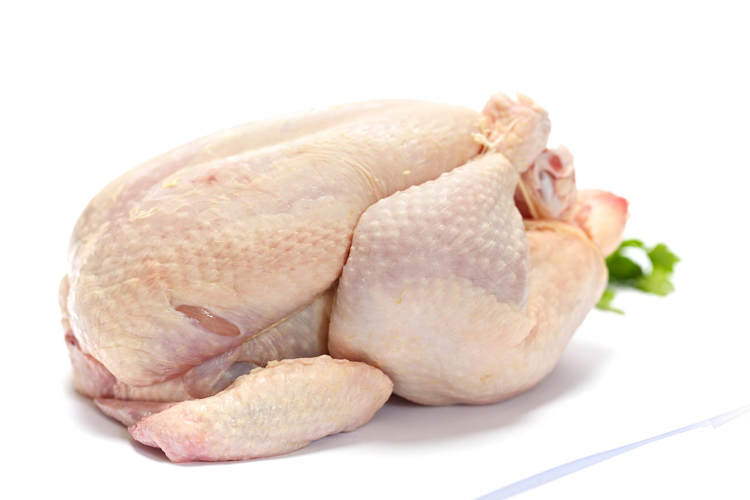 Whole Chicken, Glatt kosher